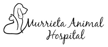 Murrieta Animal Hospital